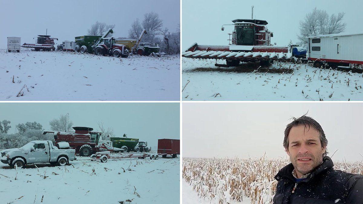 El efecto de la nieve...¿Afecta o beneficia a los cultivos?