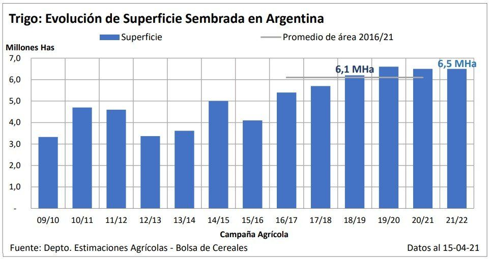 Los productores de trigo analizan las distintas variables que presenta el arranque de la campaña.