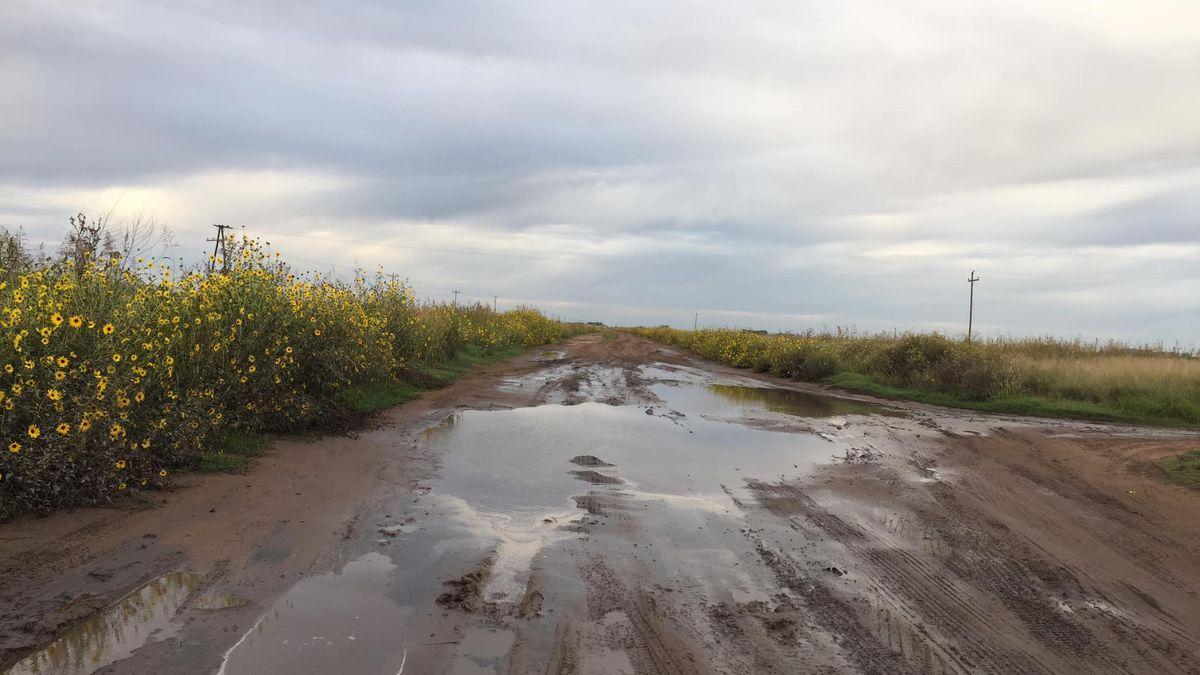 La Ruta del Cereal permitiría sacar las cosechas por la ruta 33. El transporte entre Salazar y Garré
