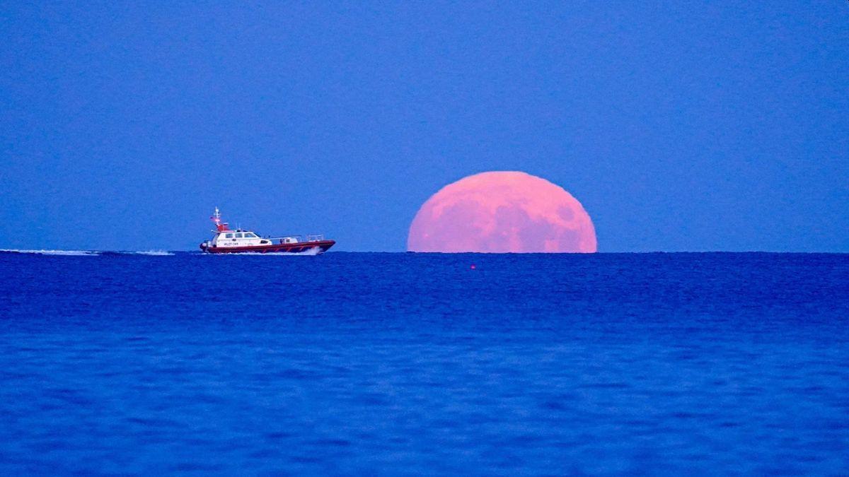 Luna de cosecha es el término que se le da a la luna llena que parece más cercana al equinoccio de otoño