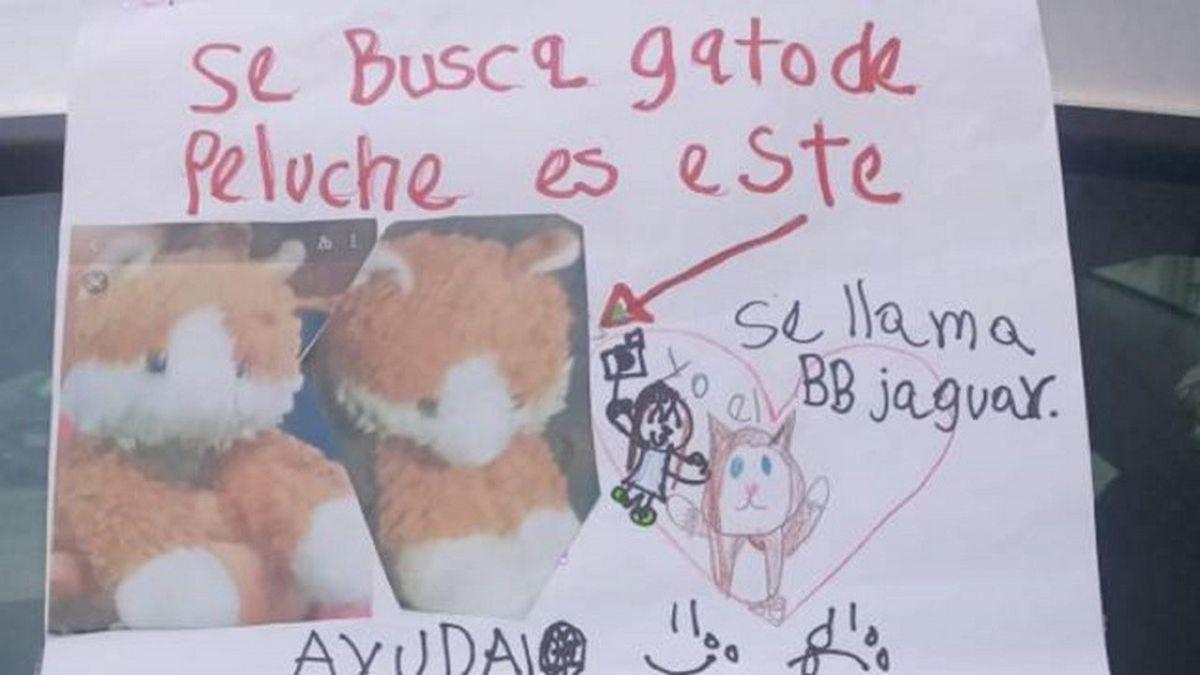 Una niña ofrece una tierna recompensa para encontrar a su gato de peluche