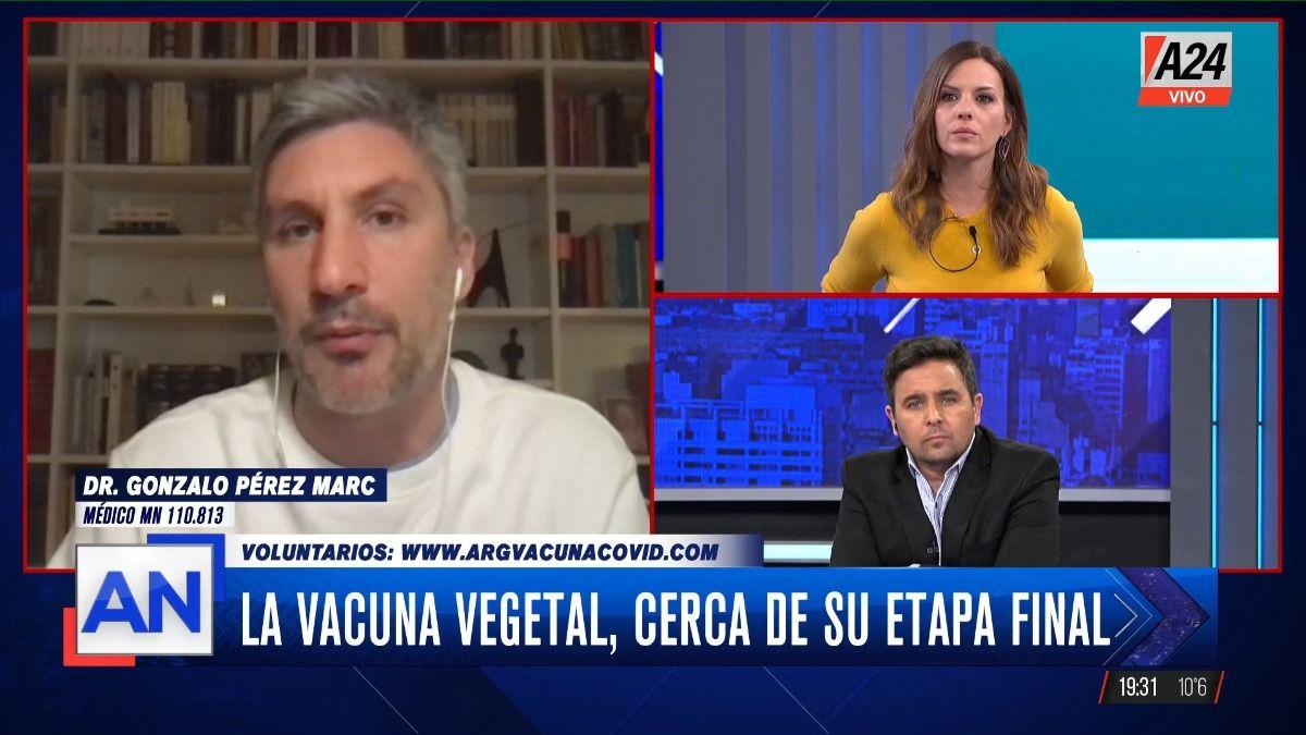 El médico investigador Gonzalo Pérez Marc está a cargo de los estudios que se realizan en Argentina sobre la vacuna de origen vegetal.