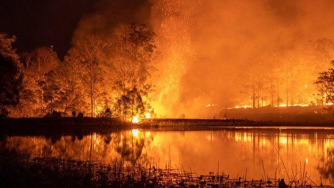 Incendios en Australia: 23 muertos, 1500 casas destruidas y críticas al Primer Ministro
