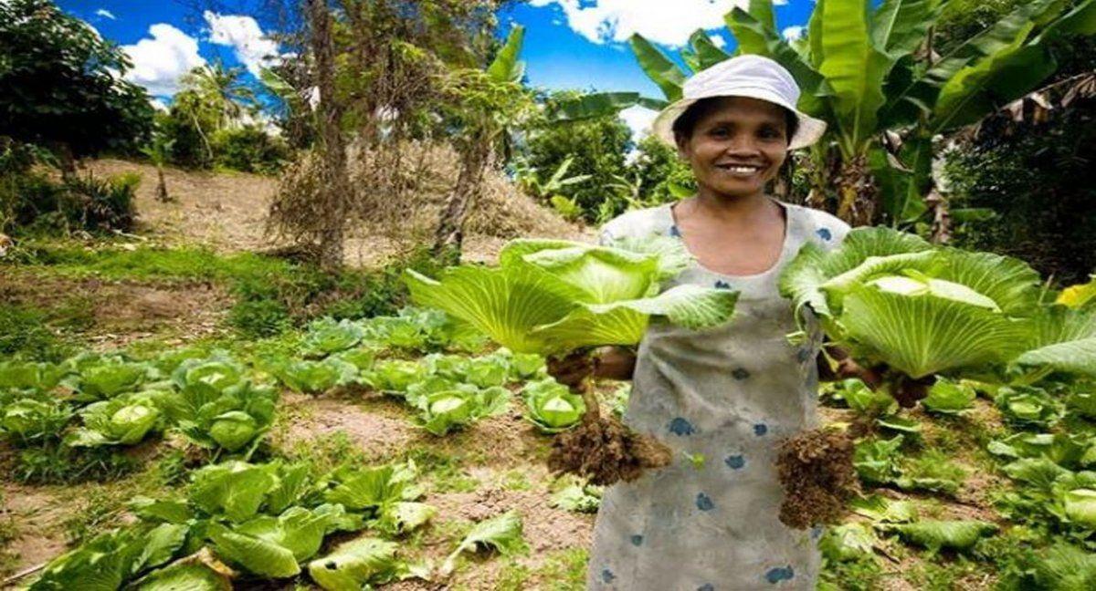 Una agricultora a pequeña escala de Madagascar muestra sus coles producidas en forma ecológica. Ella forma parte de un sector vital para la seguridad alimentaria en el mundo
