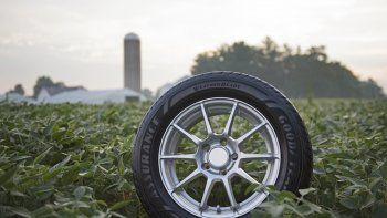 Goodyear y la adquisición sostenible de soja para neumáticos