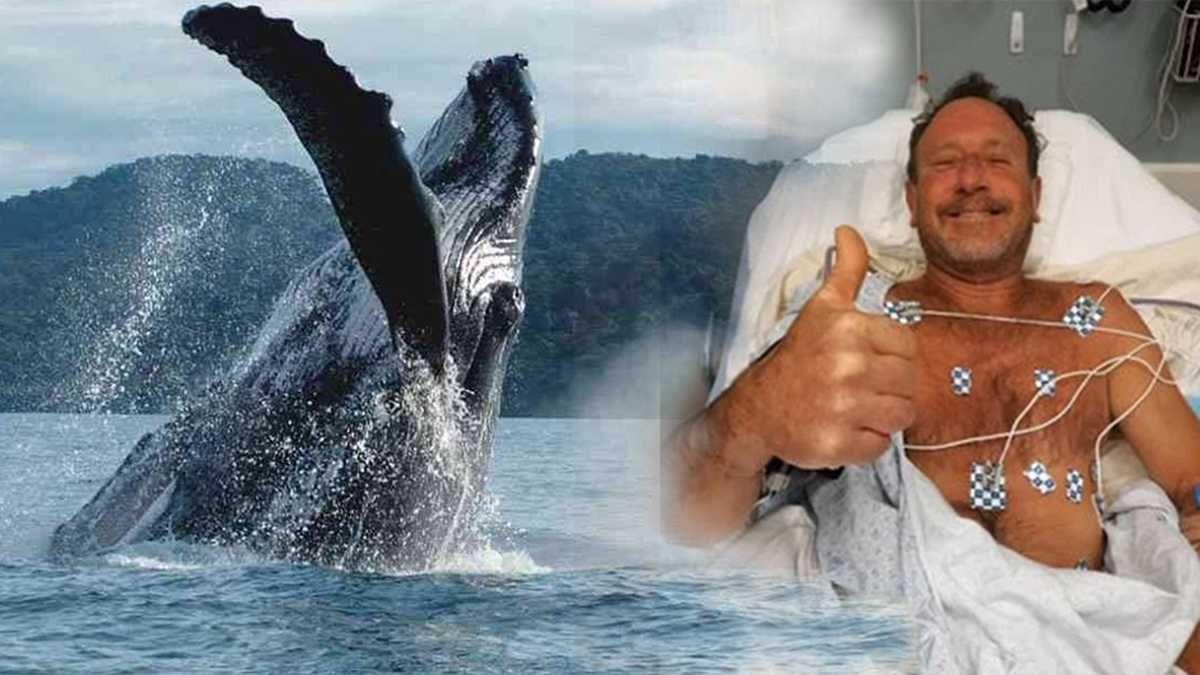 Una ballena se tragó y escupió a un pescador.