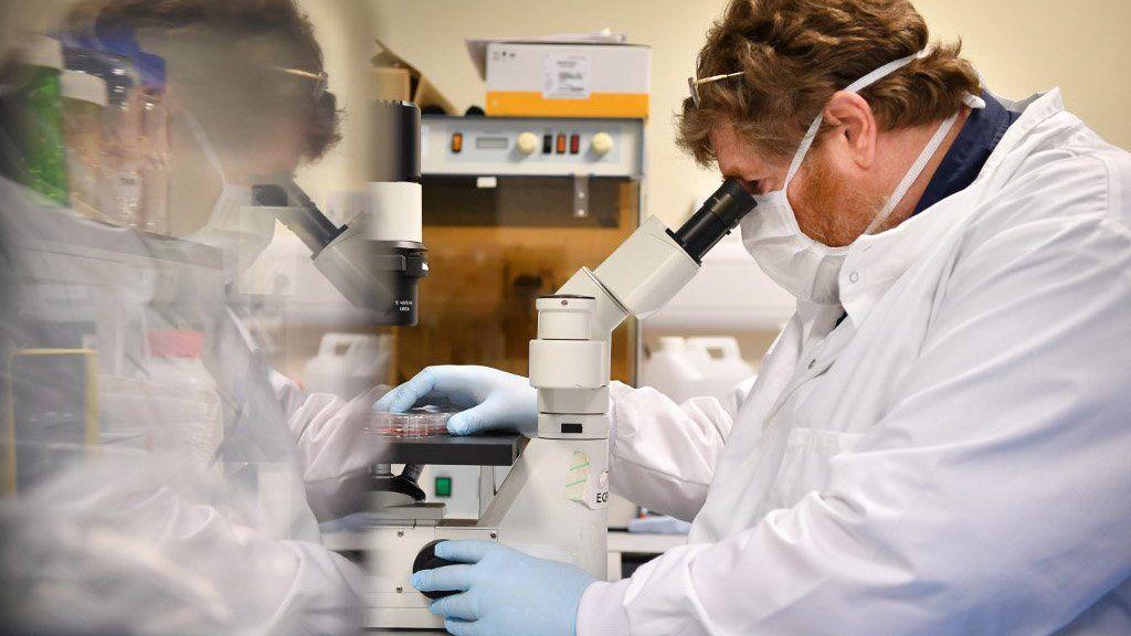 Un estudio revela un dato muy optimista sobre la duración de los anticuerpos en los recuperados de coronavirus