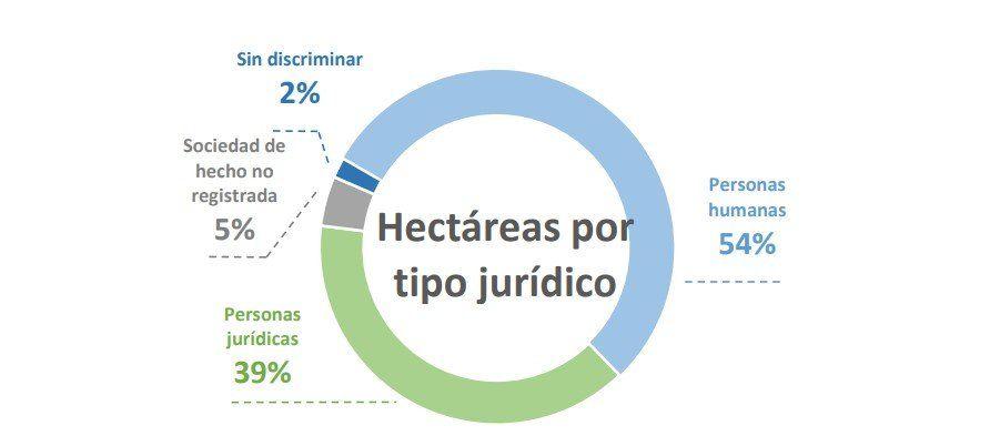 El tipo jurídico, analizado desde la perspectiva de las hectáreas.